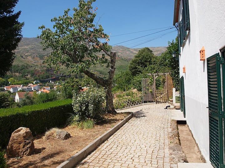 Casa no meio da Serra - Qta das Vinhas