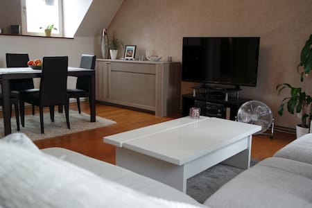 Bed & breakfast & bike in Strasbourg city center - Страсбург