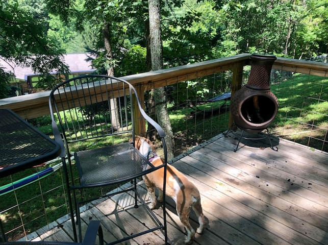 dog-friendly - just give us a shout for details since the tiny home is small - huge fenced backyard for your pup to roam