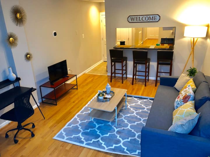 ☆Modern Federal Hill Condo ★ 2 FREE PARKING SPOTS☆