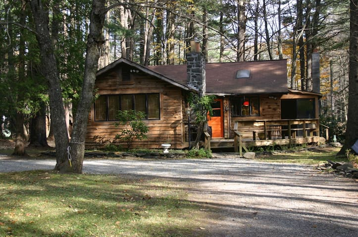 Kate's Lazy Cabin on Mink Hollow - BEARSVILLE - Σπίτι