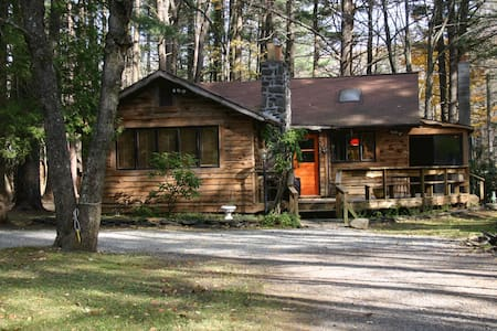 Kate's Lazy Cabin on Mink Hollow - BEARSVILLE - House