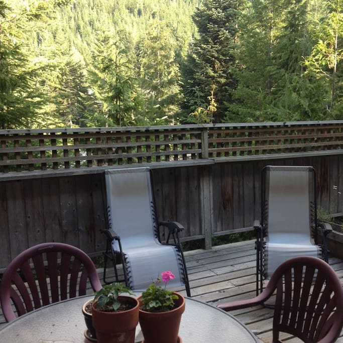 Beautiful 15 foot deck that looks directly up Whistler Mountain