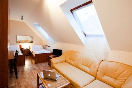 Large city room for up to 4 people - Písek