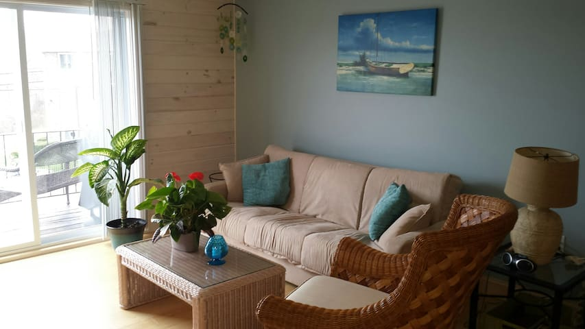 All new apartment 300 yards North Beach - Hampton - Lägenhet