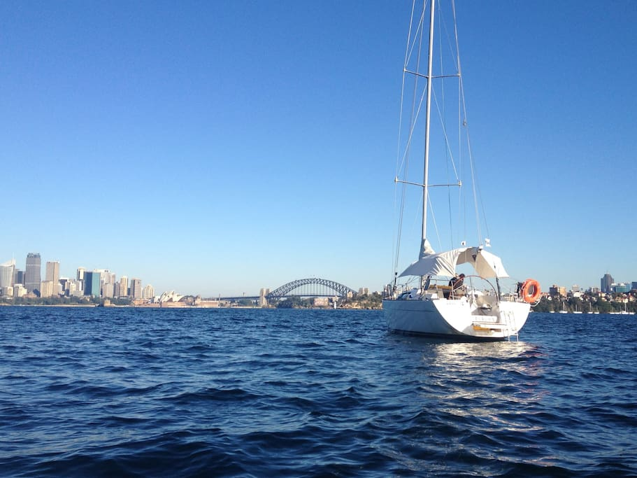 Stay overnight and wake up to a panorama of Sydney!  This is where the yacht is moored with the Taronga Zoo option.