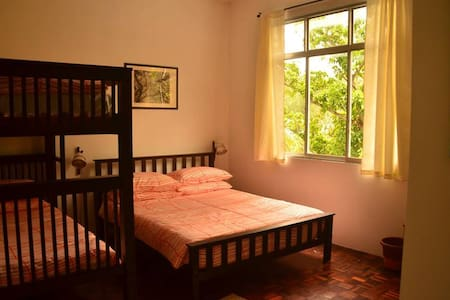 Akar Lima Kulim - Family Room