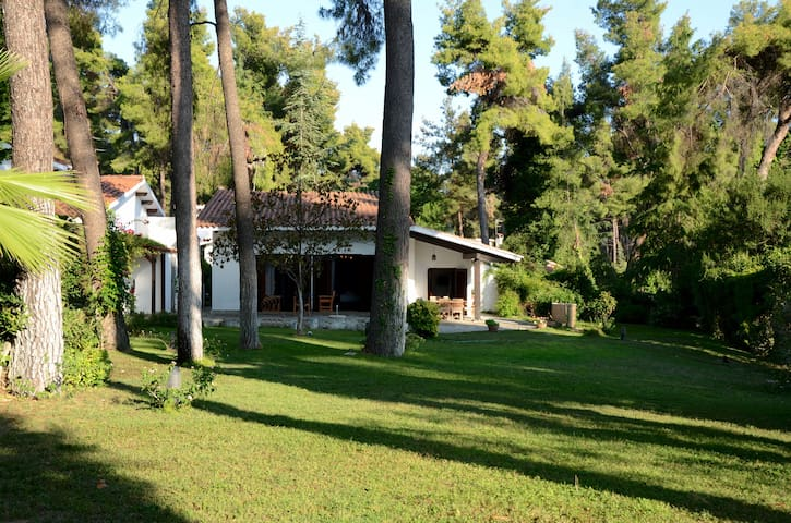 Sani Villa with garden and pool great for family!