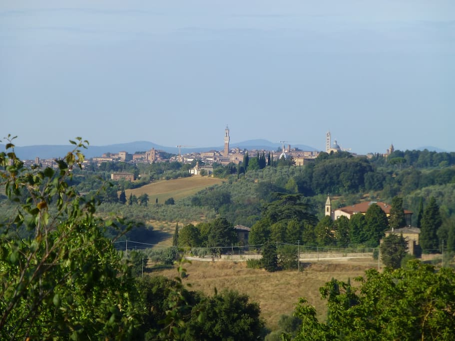 Siena skyline from the windows of the living room! ((this picture as been taken by a guest)