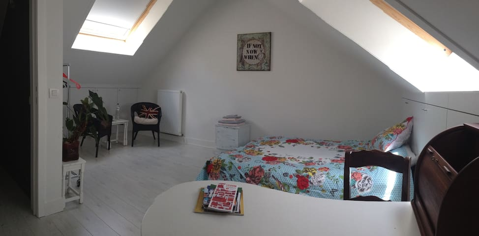 Spacious room in charming house - Leuven - Huis