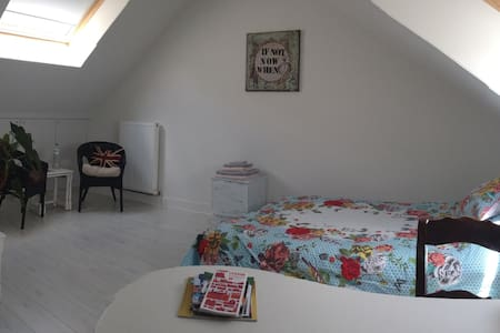 Spacious room in charming house - Leuven - 独立屋