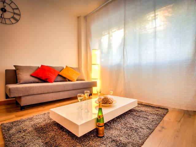 Nice 2 rooms in European District