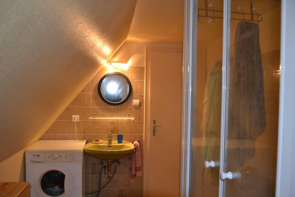 Salle de bain avec douche et toilette