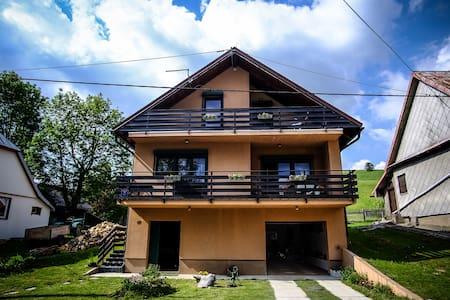 Kuća Bor / House Bor (Pine) - Mrkopalj - Dům