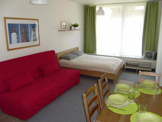 Apartment Benefit Harrachov - Harrachov - Lägenhet