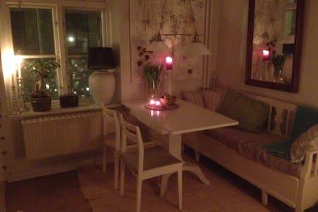 Cozy apartment in Haga - Göteborg
