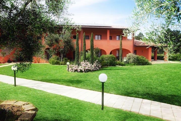 Monolocale Borgo Campetroso - Monterotondo Marittimo - Apartamento