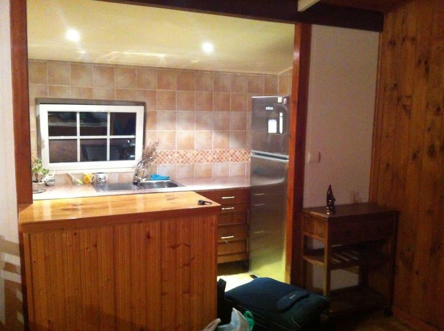 Esta seria la cocina, que dispone de fregadero y gran frigorifico solamente.