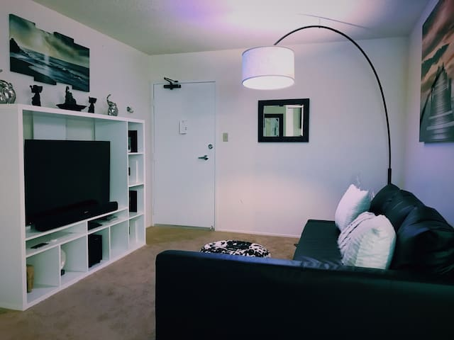 COZY 1 Bedroom Apt. BART/Freeway/close to SFO