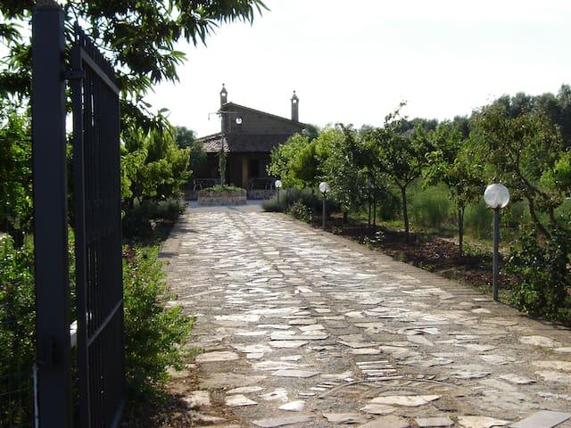 Villetta in campagna - Tuscania - House
