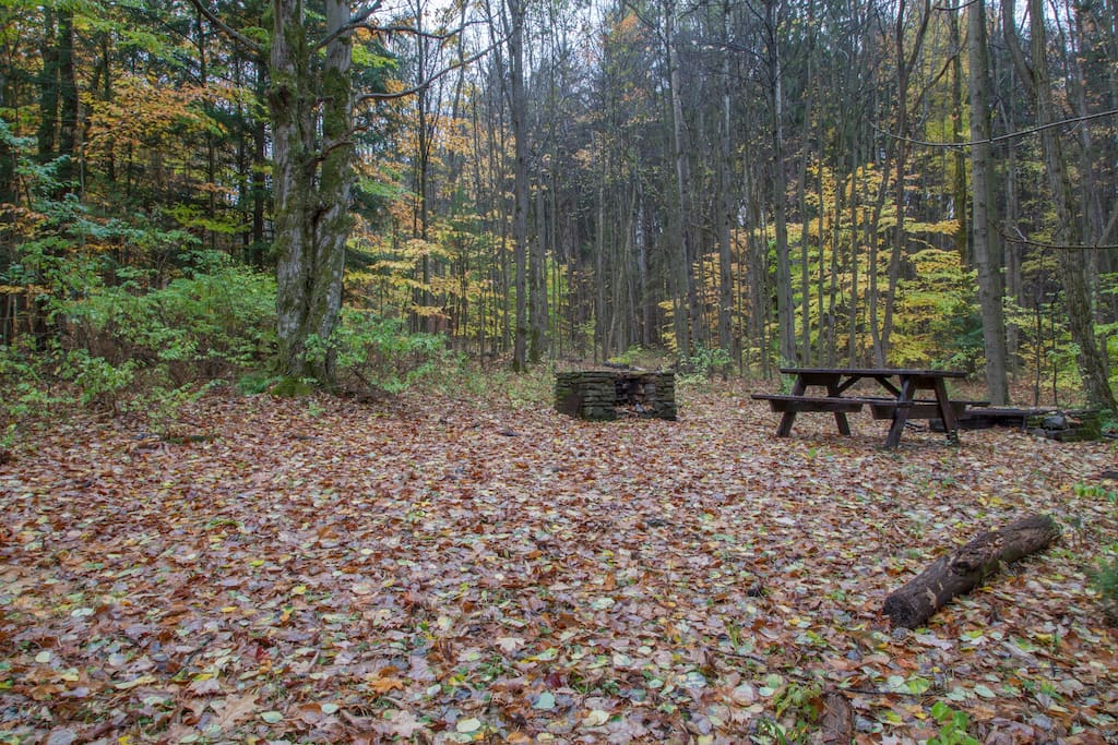 Basic Tent Sites with Picnic Table and Fire Pit