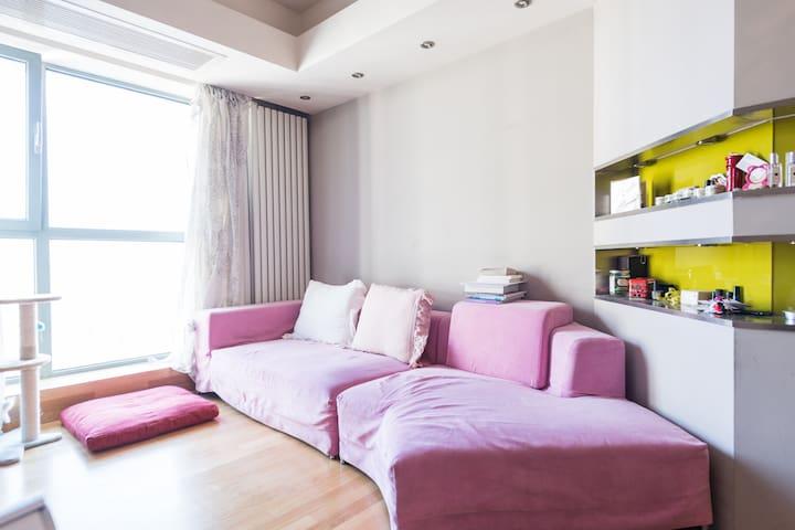 Beijing City Center One Bedroom Cozy Apartment - Dongcheng Qu - Apartamento