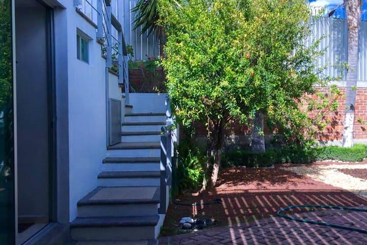 Tu departamento c/jardín en la zona dorada de León - León - Appartement