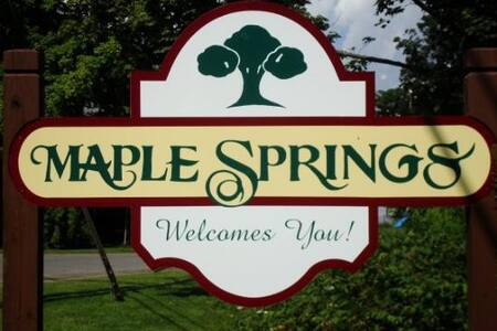 Maple Springs Lake Front Getaway - Bemus Point - Casa adossada