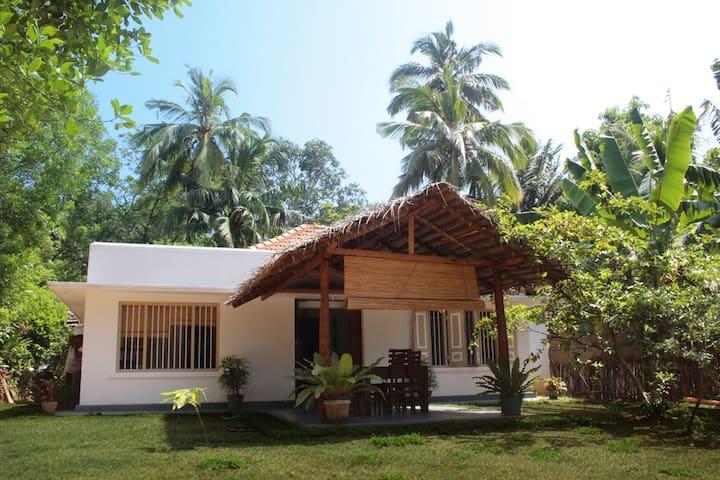 Mango House - Hiriketiya - Matara