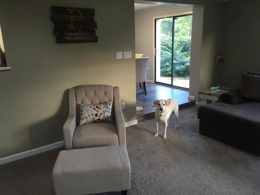 Shared Living Room and my dog Sunny!