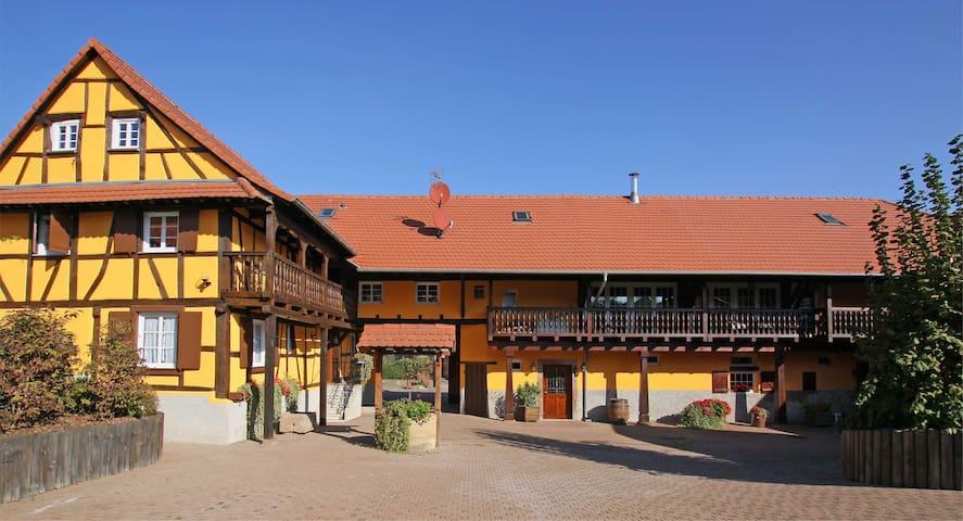"""Studio """"La Vigne"""" - Donnenheim - Casa de hóspedes"""