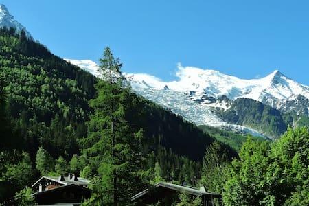 4 pers, Vue Mt Blanc, Bien situé !