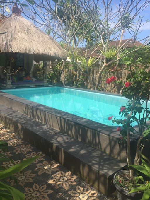Salt water pool with Balinese bale to relax, read and chill!