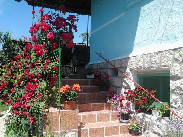 Család-barát vendég ház a Bükkben. - Nagyvisnyó - House
