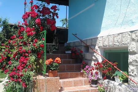 Család-barát vendég ház a Bükkben.