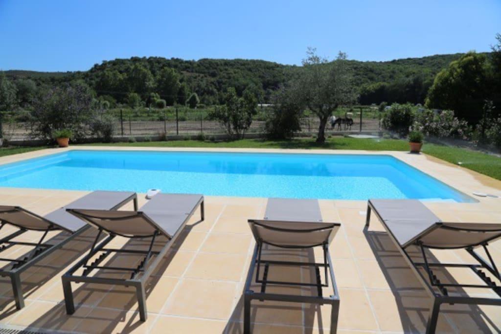 villa 200 sq m with swimming pool ville in affitto a villeneuve loubet provenza alpi costa. Black Bedroom Furniture Sets. Home Design Ideas