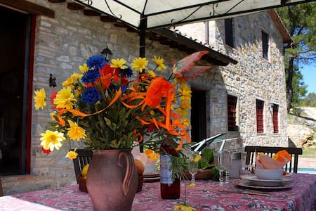 cottage between Siena + Florence - Castellina In Chianti