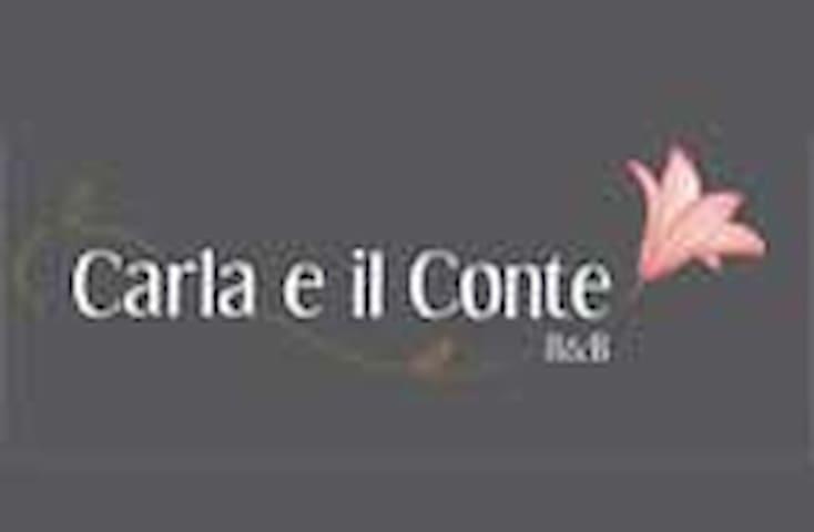 Carla e il Conte B&B - Buttigliera Alta - Vila