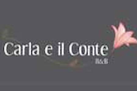Carla e il Conte B&B - Buttigliera Alta - Villa