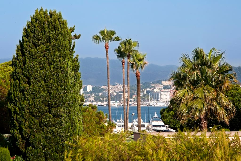 Cannes zone palm beach proche plage appartements louer for Location garage cannes palm beach