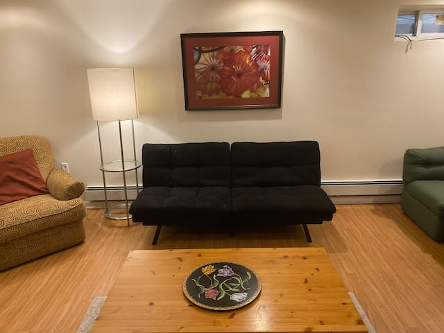 Large, spacious 1 bdr bsmt apartment,25 min to NYC