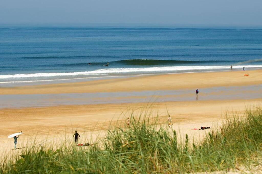 L'appartement se trouve à 20 mètres de l'un des spots de surf les plus prisés. Juste derrière la dune