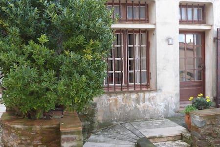 Studio 35m2 vieux village de Gassin - Gassin