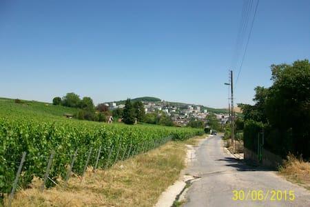 Chambres au milieu des vignes - Épernay