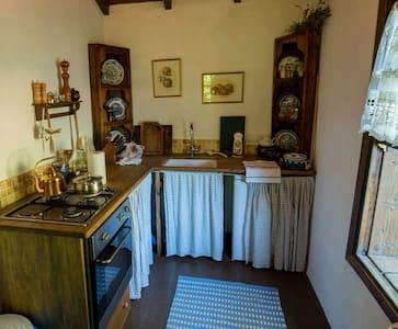 Tranquil, renovated stone cottage. - Arpacik, Fethiye - Stuga