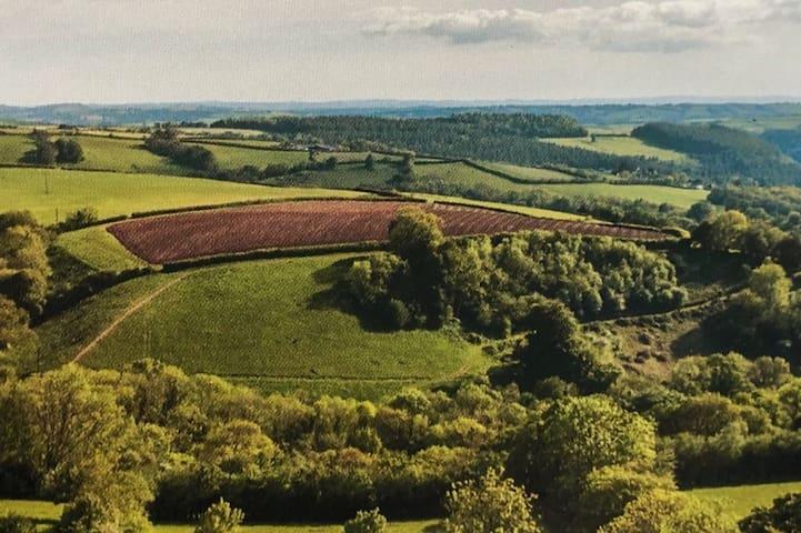 Glorious Exmoor views quiet warm comfortable Flat