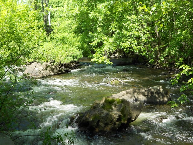 Bantam River