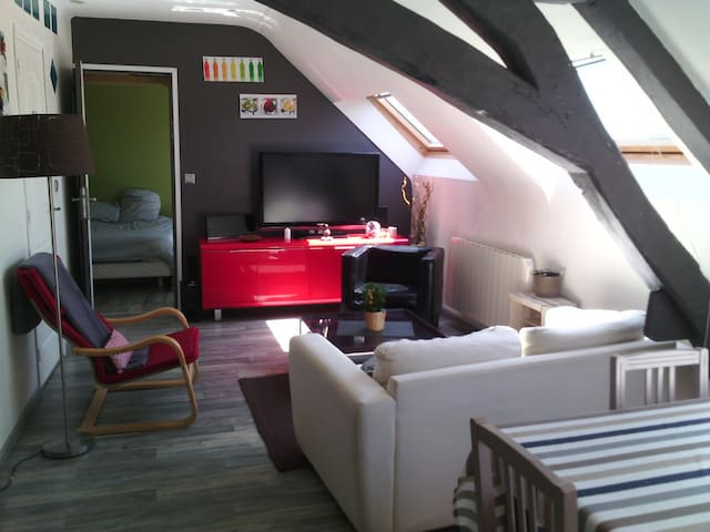 Appartement cosy hyper centre - Alençon - Apartment