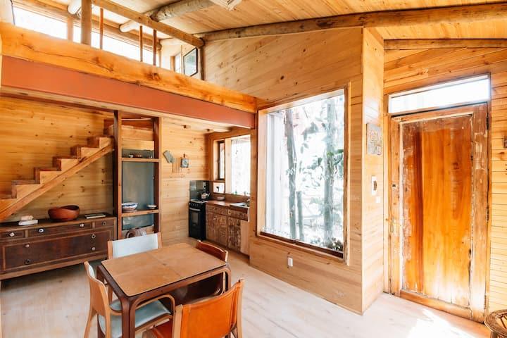 La casa del bosque en Tunquen