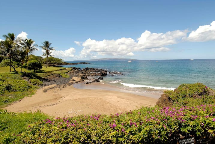 Makena Surf 2 Bedroom Ground Floor Oceanfront! - Kihei
